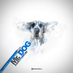 denis_muric_logo Coors Light, Light Beer, Web Design, Grafik Design, Canning, Logo, Design Web, Logos, Home Canning