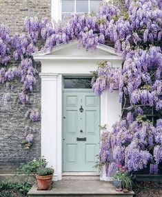 Is Millennial Pink Out? 5 Fresh Pastel Paint Color Ideas A duck egg blue door is complemented by an abundance of wisteria surrounding the front entrance of this house in London's Haggerston neighborhood. Front Door Paint Colors, Painted Front Doors, Paint Colours, Duck Egg Blue Door, Robin Egg Blue, Spring Photos, Front Entrances, House Front, Door Design