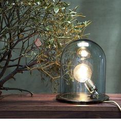 Lampe cloche, Glow in a dome, transparent, base argentée, - Ebb and Flow Flow Design, Sign Design, Glass Domes, Glass Vase, Glow, Cloche, Luminaire Design, Lamp Bases, Transparent