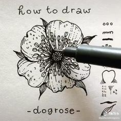 Pencil Art Drawings, Cool Art Drawings, Art Drawings Sketches, Sketch Pen Drawing, Black Pen Sketches, Black Pen Drawing, Flower Drawings, Doodle Art Drawing, Drawing Flowers