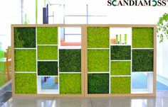 This interior example is the company. I built it on the ceiling of the company. It gives a fresh impression. This purifies fine dust and air pollutants. It is consumed a lot as an interior product! Thank you. #moss #DEcorativeWall #panel #Decor #Livingroom #Livingwall #Mosstile #PreservedMoss #scandiamoss #mosswall #walldeco #Eco #greenwall #showroom #noisepanel #naturalmoss #Dehumidification #Humidification #Airpurificationplant #test #noise #office #shoppingdistrict #Acousticroom #dried Moss Wall Art, Metal Wall Art, Moss Decor, Decorative Wall Panels, Plant Wall, Home Interior Design, Indoor Plants, Showroom, Wall Decor