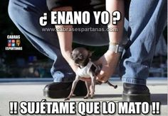 New memes en espanol nuevos Ideas Memes Humor, New Memes, Man Humor, Spanish Jokes, Funny Spanish Memes, Funny Shit, Hilarious, Funny Memes Images, Memes In Real Life