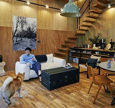 東京で家づくりをしたい人へ。ベツダイ×サポーズデザインオフィスの谷尻誠が考える、東京で豊かに暮らすスタンダードな家「BENTO HOUSE」に柴犬まるが訪問。
