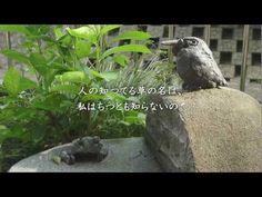 金子みすゞSMC No.128 草の名