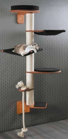 """Kratzbaum von Profeline Modell Wendelin Holzfarbe Kirsche, Bezug Teppich Schwarz  Kratzbäume zur Wandmontage. Frei """"schwebend"""" an der Wand Kratzbaum Wendelin in Design, Optik und katzengerechter Gestaltung höchste Ansprüche! Klettern, kratzen, schlafen - mit diesem Kratzbaum fühlt sich jede Katze richtig wohl!"""