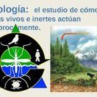 Vocabulario de Ecología. Ecology Vocabulary. Life Science. Ecosistema, Energía, Organismo, Cadena Alimenticia, Red Alimenticia, Pirámide Alimentari...
