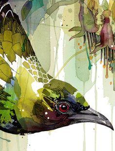 Bird Illustration, Illustration Artists, Silk Painting, Painting & Drawing, Rachel Walker, Animal Paintings, Bird Paintings, Walker Art, Bird Artwork