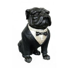 BULL DOG sculpture statue with bow tie in tuxedo CUTE bulldog or Dawg ?