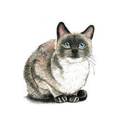 Rodo Botones ~ Cat Purring