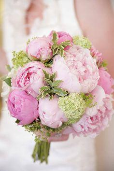 Brautstrauß mit Pfingstrosen - Bildergalerie In addition to this beautiful bridal bouquet with peoni Simple Wedding Bouquets, Diy Wedding Flowers, Bride Bouquets, Bridal Flowers, Flower Bouquet Wedding, Floral Bouquets, Floral Wedding, Bunch Of Flowers, Flower Arrangements