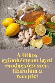 Ez a titkos gyömbérteám receptje, minden betegséget gyógyít Natural Life, Drinking Tea, Vitamins, Paleo, Food And Drink, Drinks, Syrup, Health, Smoothie