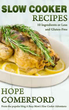 Slow Cooker Recipes 10 Ingredients or Less and Gluten-Free Cookbook Review