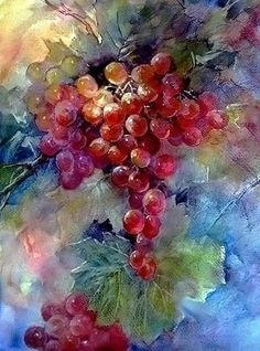 ART~ Roses And Grapes ~ ARTchat - Porcelain Art Plus ~ (formerly Chatty Teachers & Artists) Grape Painting, Fruit Painting, China Painting, Watercolor Fruit, Watercolour Painting, Watercolor Flowers, Art Floral, Fruit Art, Flower Art