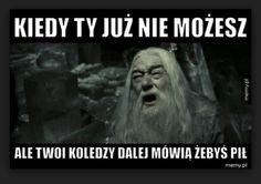 Harry Potter Fandom, Harry Potter Memes, Smile Everyday, Fantastic Beasts And Where, Tolkien, Best Memes, Hogwarts, Wattpad, Humor