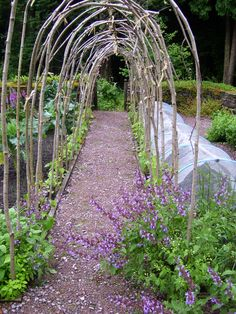Hazel arch over path.  Ideal for sweet-peas, runner beans or even small varieties of squash.  Space saving and very picturesque.