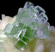 Apophyllite - (KF), stilbite   from Rahuri, Ahmadnagar, Maharashtra, India / Mineral Friends <3