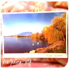 2013-09-23 #Postcard from the #UnitedStates (US-2415724) via #postcrossing (It has a Swiss postmark and says it's from the 8th Swiss Postcrossing meeting.) #NewJersey #Switzerland #Padgram