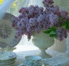 Aiken House & Gardens ~ lilacs and transferware Shabby Chic Flowers, Love Flowers, Dried Flowers, Beautiful Flowers, Purple Flowers, Teacup Flowers, Simply Beautiful, Beautiful Gardens, Beautiful Things