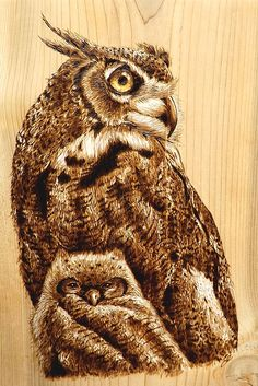 Pyrography of a young owl with its mother standing watch burned on an approximately 11 by 14 inch piece of wood. Wood Burning Stencils, Wood Burning Crafts, Wood Burning Patterns, Wood Burning Art, Wood Crafts, Wood Patterns, Pyrography Patterns, Pyrography Ideas, Got Wood