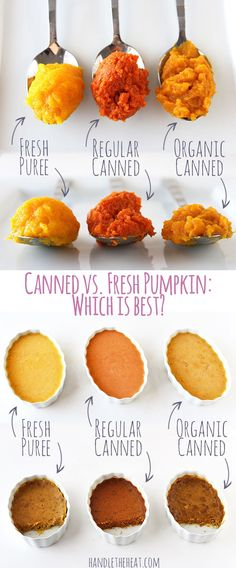 Fresh vs. Canned Pumpkin, which is best? Testing fresh pumpkin puree, regular canned pumpkin, and...
