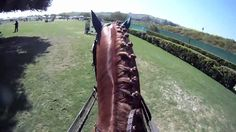 GoPro: Horse Show Jumping Love this video!