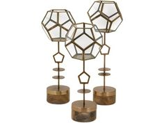 The Hexagon Terrarium stand set delivers sleek geometric inspiration. These contemporary plant containers feature mango wood bases and glass geodesic bowls to house eco-systems. Terrarium Stand, Gold Terrarium, Terrarium Plants, Small Terrarium, Succulent Terrarium, Succulent Plants, Decorative Objects, Decorative Accessories, Tabletop Accessories