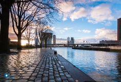 Embedded image permalink City Landscape, Photography Website, Embedded Image Permalink, Rotterdam, Netherlands, Landscape Photography, Architecture, Pictures, The Nederlands