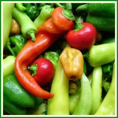 Chili Peppers- Enjoy the Heat, Love the Benefits