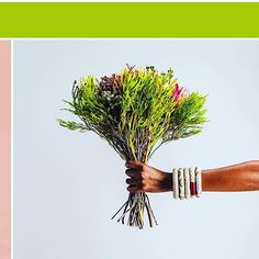 Some florals (and a touch of arm candy) to brighten up your hump day. : : : : (Coming Soon)