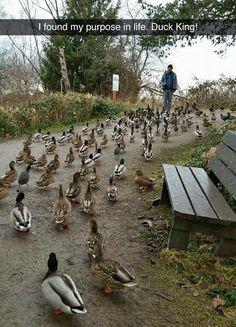 All hail duck King!