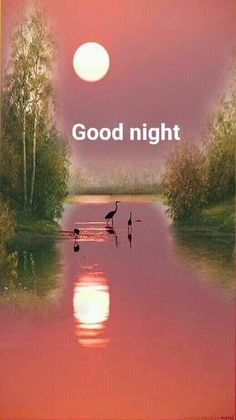 Good Night image to lover for WhatsApp Jesus Good Night Images, Sweet Good Night Images, Photos Of Good Night, Romantic Good Night Image, Lovely Good Night, Good Night Sleep Tight, Good Night I Love You, Good Night Gif, Good Night Sweet Dreams