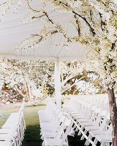 Ceremony seating arrangements.