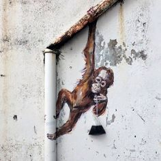 Ernest Zacharevic's monkey hangs from a pipe in Malaysia. Creativity is everywhere in the world.