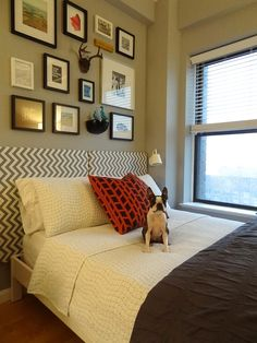 Winner of My Bedroom Retreat contest of course must have a Boston Terrier to accessorize the space!