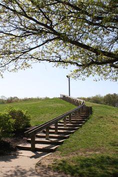 #laurelacrespark #mountlaurel,nj Mount Laurel, Best Places To Live, Acre, Country Roads, Outdoor Decor, Mornings