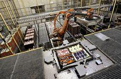Automatisk. Nettos gigantiske varelager ved Køge er i vid udstrækning automatiseret. - Foto: JENS DRESLING