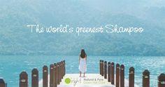 O'right hat das grünste Shampoo der Welt