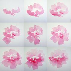 100 Days of Florals 2016 — Stephanie Fehrenbach