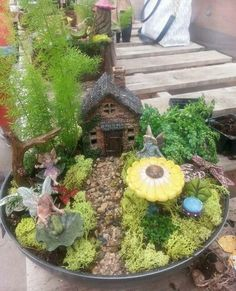 Look at all of the items in this garden! The moss and plants really draws our attention to the fairies and their charming little home Mini Fairy Garden, Fairy Garden Houses, Garden S, Fairies Garden, Garden Ideas, Indoor Plant Wall, Indoor Plants, Hobbit Garden, Miniature Fairy Gardens