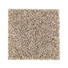 Provide a luxurious feel to any room in your home with the help of this PetProof Carpet Sample MAISIE I In Color Taupe Essence Texture.