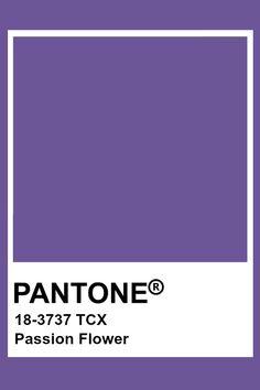 Pantone Color Chart, Pantone Colour Palettes, Pantone Colours, Light Spring Palette, Spring Color Palette, Pantone Tcx, Light Purple Flowers, Purple Iris, Seasonal Color Analysis