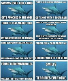 poor misunderstood shark  Pardon the f-bomb but this is funny!