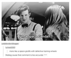 the Eleventh Doctor..I really wish people would stop this....I will find you and skin you....