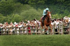Iroquois Steeplechase in Percy Warner Park