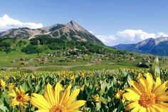 crested butte colorado - In the summer!