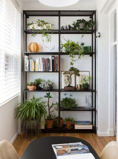 estante com plantas dentro de casa de ferro preta