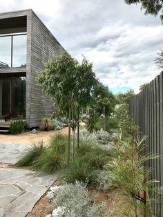 Australian Garden Design, Urban Garden Design, Australian Native Garden, Backyard Garden Design, Dyi Landscaping Ideas, Modern Landscaping, Front Yard Landscaping, Coastal Landscaping, Landscaping Design
