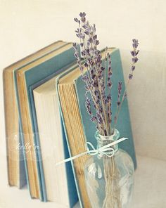 Lavender Ledge- Book Photography- Vintage Inspired- Blue, Lavender, Grey- Nursery Decor- 8x10 Fine Art Print. $ 25.00, via Etsy.