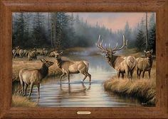 F593010566: Framed Autumn Mist-Elk Canvas by Rosemary Millette