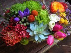 lush, mini fresh landscape.  Stems Flower Shop